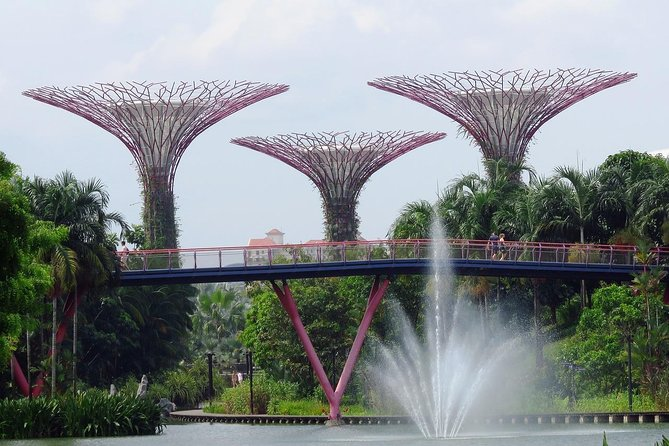 Singapore: Gardens by the Bay Admission E-Ticket photo 7