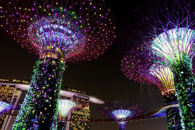 Singapore: Gardens by the Bay Admission E-Ticket photo 10