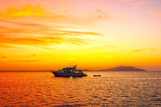 Snorkeling Trip to Tiran Island