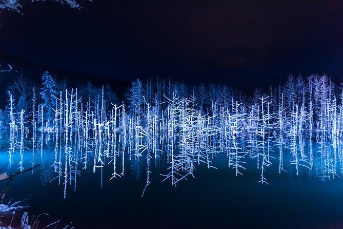 Special Winter Tour! Visit Asahiyama Zoo, Aoi-Ike Light Up and Shirahige Falls!