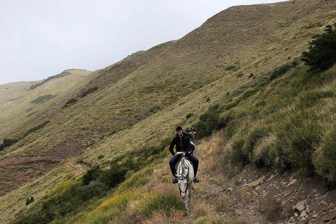 4hsHorseback Riding with snack in El Desafio, San Martín de los Andes, Argentina