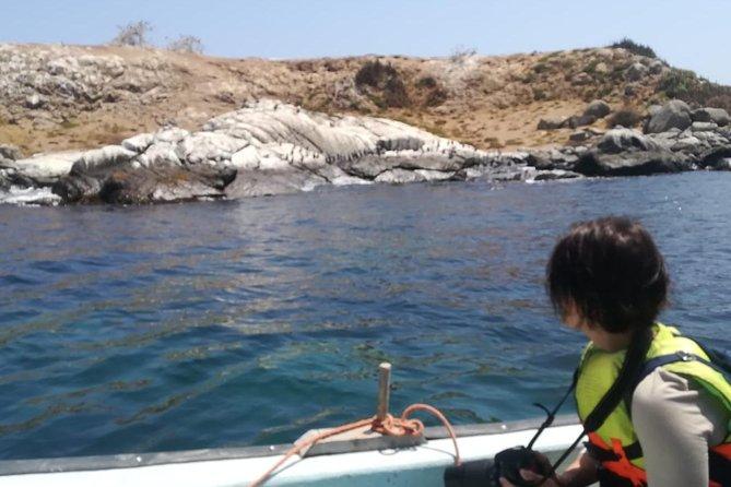 Zapallar and Cachagua Island Experience