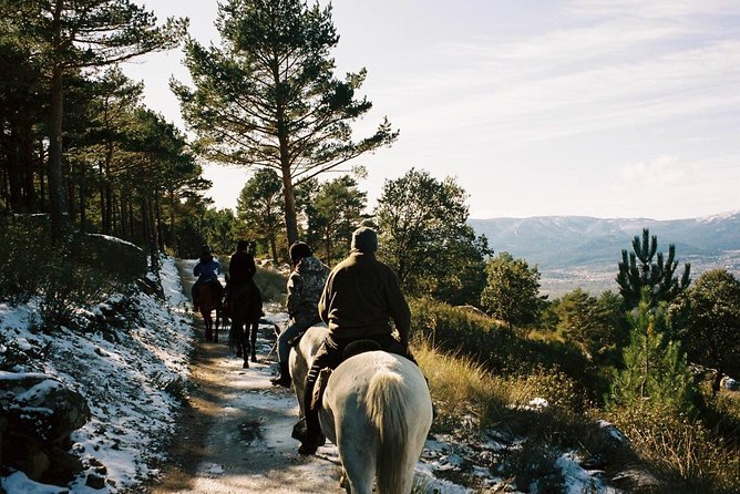 Horse Riding Madrid Natural Park