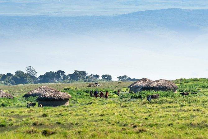 Naipenda Ngorongoro