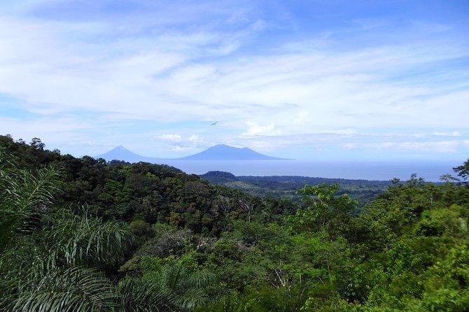 Tierra Madre Eco Lodge - Rainforest hike and organic farm tour