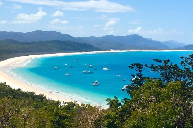 Whitehaven Beach and Hill Inlet | Awesome Beach BBQ | Family Friendly