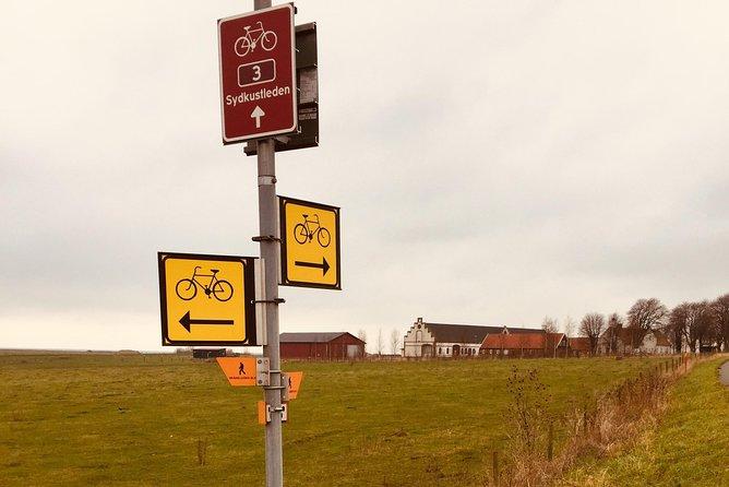 Cycle trail to Kåseberga