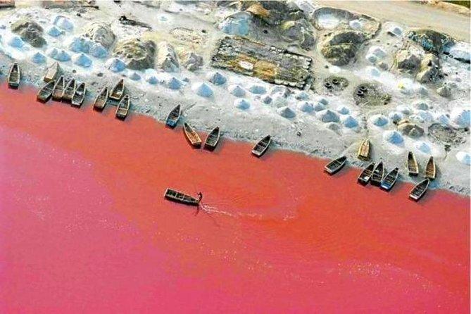 1/2 day Visit pink lake -
