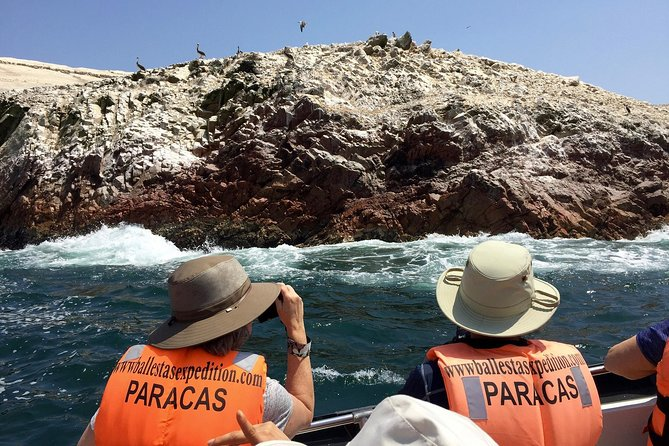 PARACAS! Ballestas Islands + Paracas National Reserve + Candelabro and much more