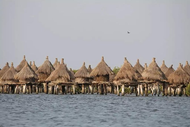 Discovery Senegal 8 Days 7 Nights photo 2