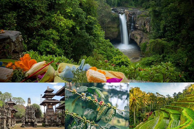 Private Bali Tour: Temple, Rice Terraces and Waterfalls