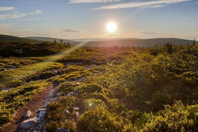 Guided MTB Trail tours in Sälen