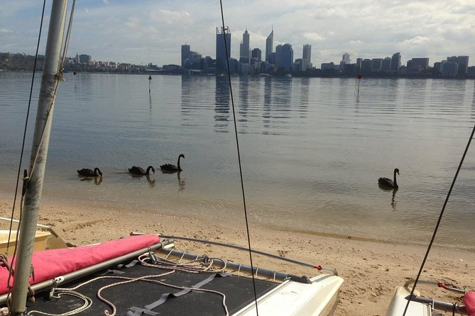 Double Kayak Hire Perth City photo 2