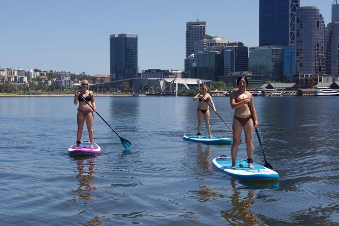 Stand Up Paddle Board Hire Perth City