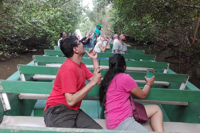 Caroni Bird Sanctuary Day and Night Tour