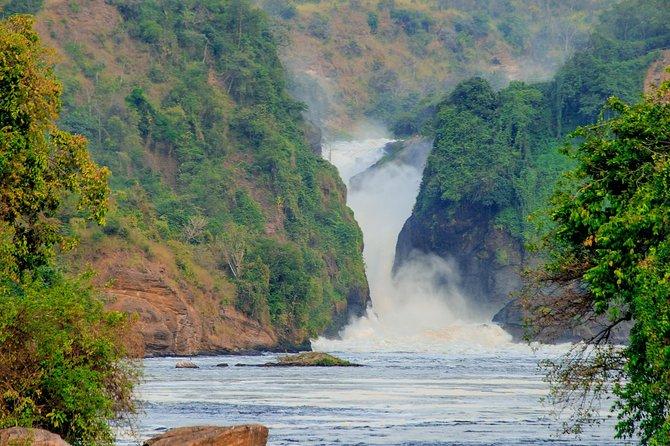 3 Day Murchison Falls