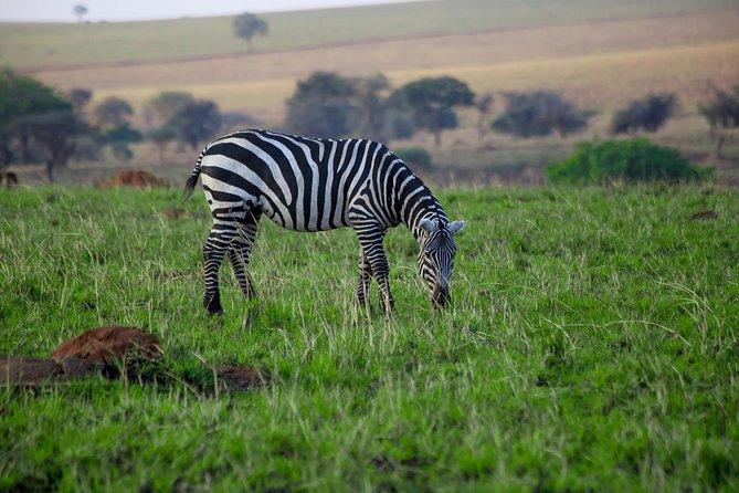 LAKE MBURO 2 Day Safari