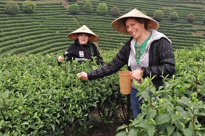 Half-Day Guilin City Tour: Elephant Hill Park and Tea Plantation