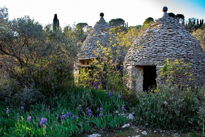 hilltop villages in Luberon-8hours photo 1