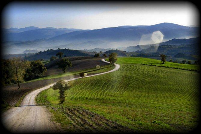New Euganean Hills Experience - Wine Bike Tour