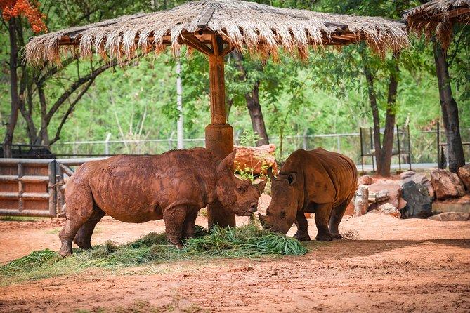 2-Days at Khama Rhino Santuary