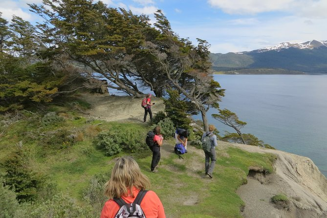 Full-Day Gable Island Eco-Adventure in the Beagle Channel