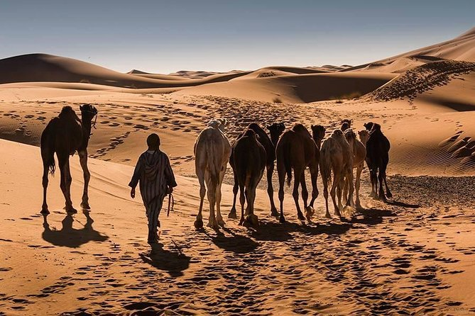 From Marrakech : Private 4 Days Desert Tour photo 1