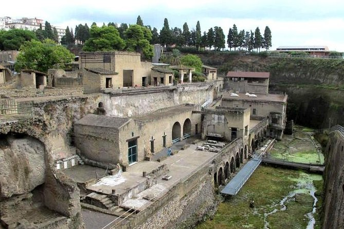 Guided tour of Herculaneum