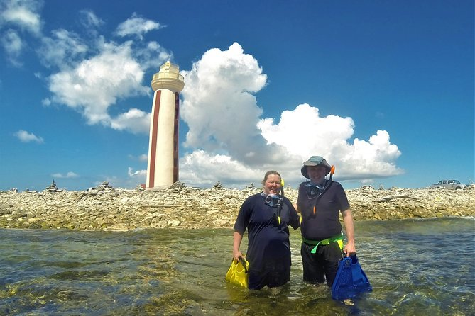 South Island tour and Snorkel combo
