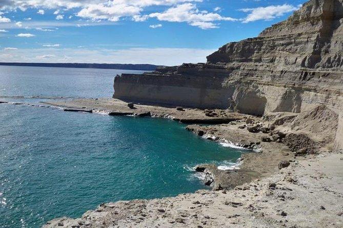Peninsula Valdes, Full dayTour or Shore Excursion
