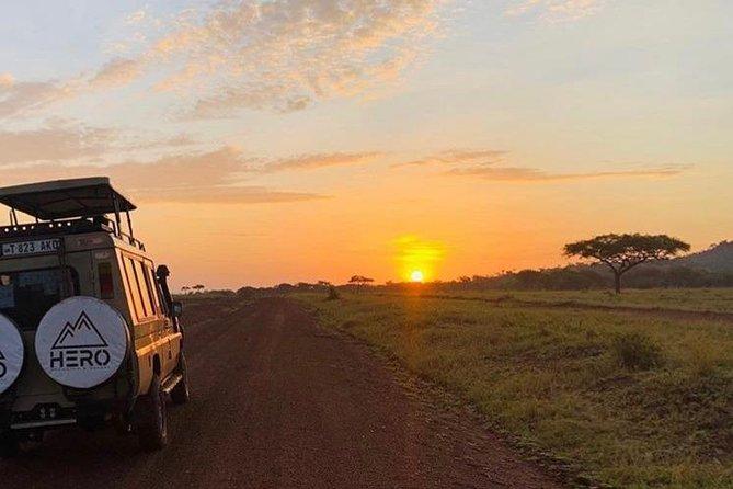 Custom African Safari - Create Your Own Adventure