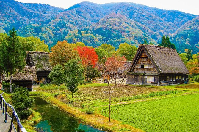 Shirakawago and Takayama 1-days tour from Nagoya