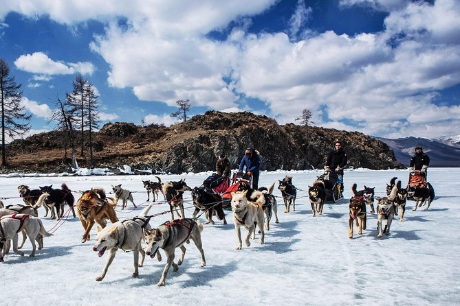 Dog Sledding and Terelj National Park and Chinggis Khan Statue for 2 days. photo 1