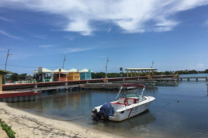 Hopkins Village to Placencia Transfer