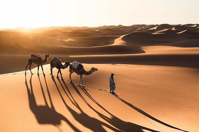 Majestic Moroccan Expeditions