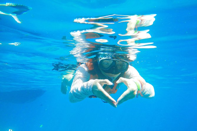 SIMILAN ISLAND *swim with turtle and explore the island * Leaving from Phuket