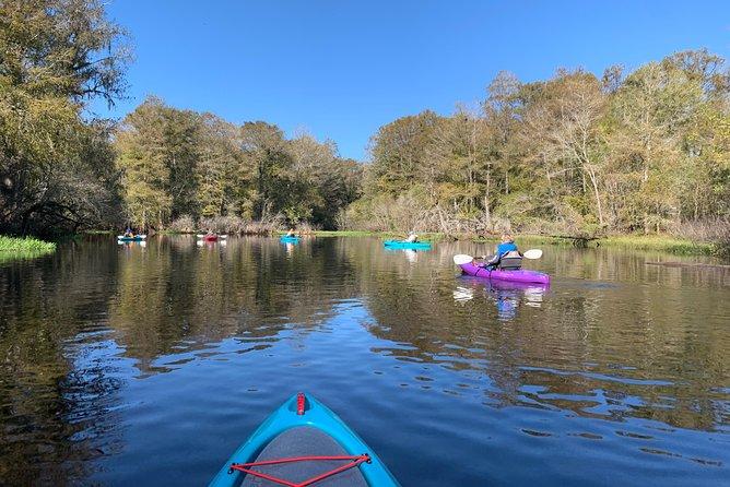 Manatee Kayak Observation Tour