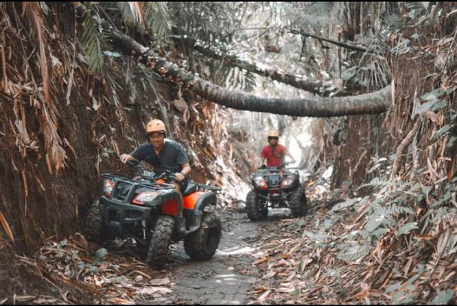 Best Ubud ATV Ride and VW Safari Tour
