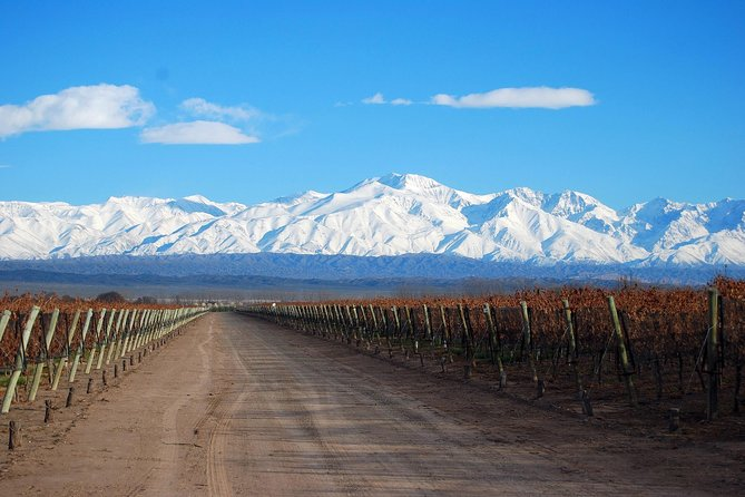 "Mendoza, between vineyards, mountains and ""gaucho"" culture"