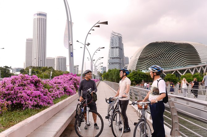 The Essential Private Singapore Bike Tour with a Local