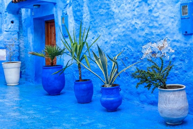 From FES to CHEFCHAOUEN Private day tour - BEST local experience | Private tour