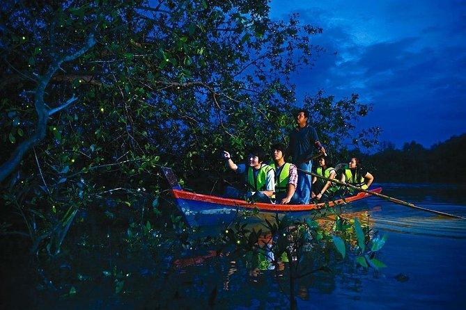 Amazing Kuala Selangor Fireflies Tour - Sic
