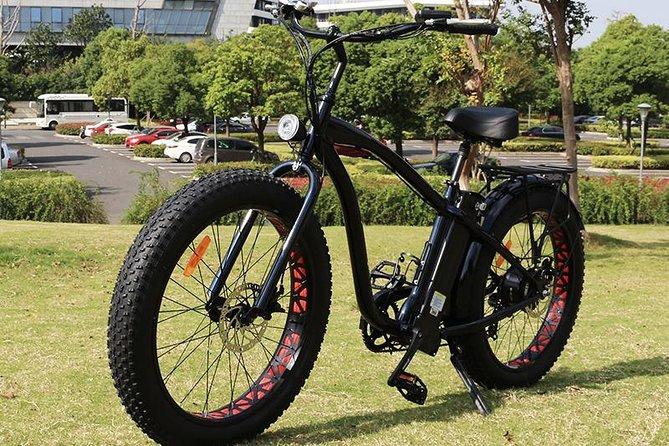 Fat Tire Beach Cruiser E-Bike