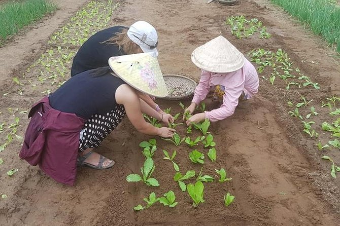 Hoi an City Walking Tour with Cooking Class & Foot Massage with Authentic Lunch
