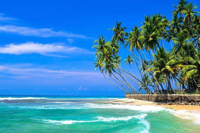 Beach Tours in Sri Lanka