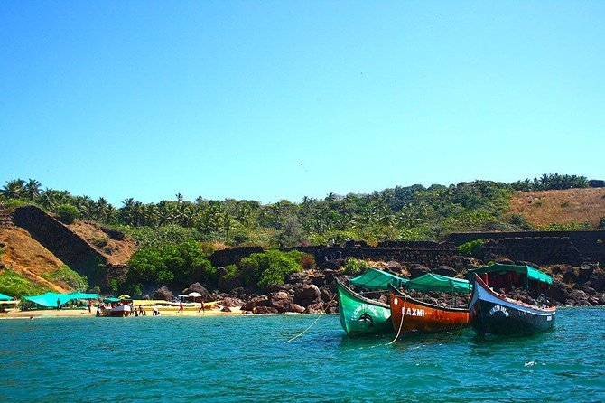 Grand island trip with Snorkeling & Dolphin sighting