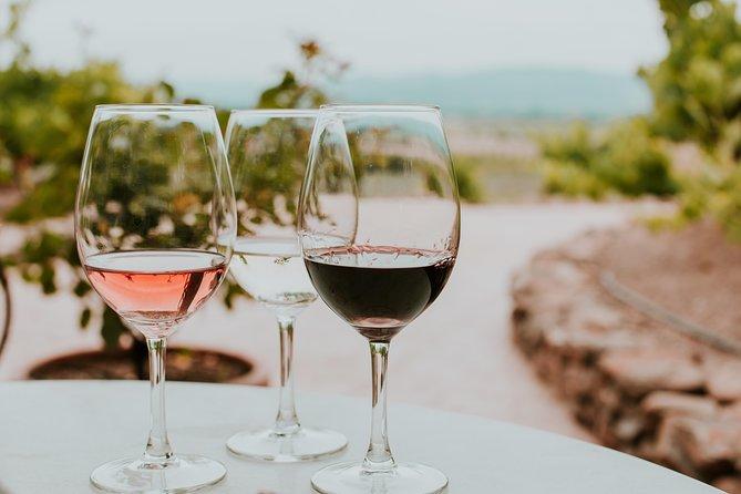 Siena in 3 Wines: Exclusive Wine Tasting with an Expert & Food Pairing