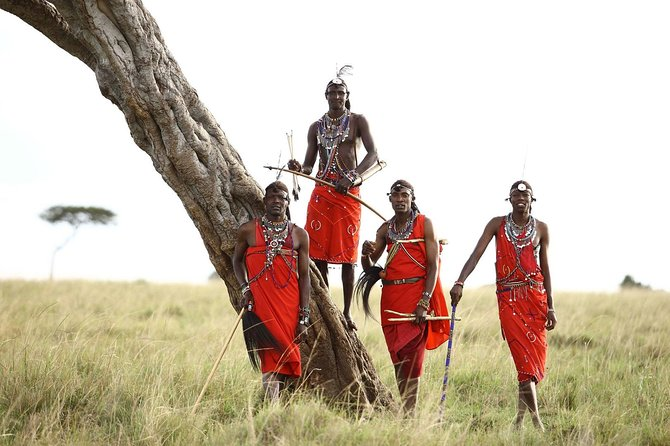 Private 7 Days Mount Kenya, Samburu, Lake Nakuru & Masai Mara Wildlife Safari