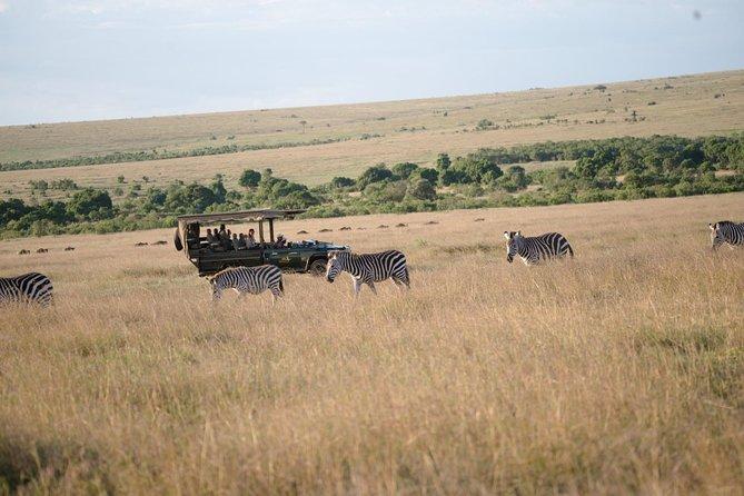 Private 7 Days Mount Kenya, Samburu, Lake Nakuru & Masai Mara Wildlife Safari