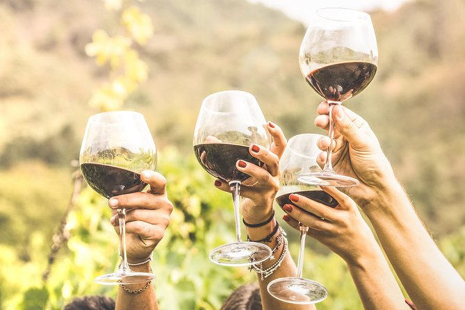 Alba in 3 Wines: Exclusive Wine Tasting with an Expert & Food Pairing